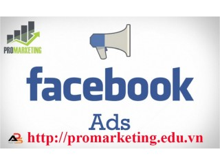 Promarketing Online
